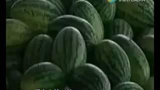 Как делают китайцы арбузов??? How to do chinese people of watermelons
