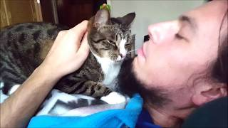 Female Cat Loves a Goatee - Compilation