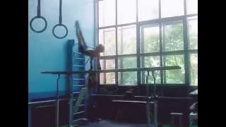 Спортивная гимнастика 2 взрослый разряд