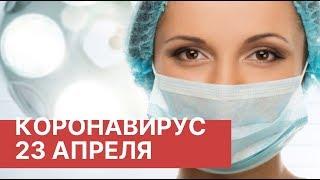 Коронавирус в России 23 Апреля 23 04 2020 Последние новости Коронавирус в Москве сегодня