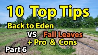 10 TIPS Back to Eden Organic Gardening 101 Method with Wood Chips VS Leaves Composting G. Series #6