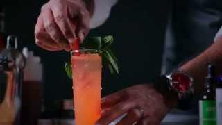 Mescal Cocktail: Fusion Conclusion