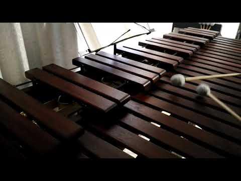 Inni di lode N°224: Guardiamo al Signore Marimba Cover