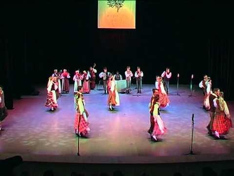SAULE folk music group LITHUANIA