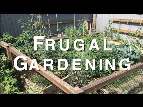 Planning for a Frugal Organic Garden that Saves you Money