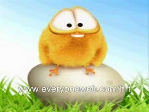sweety the chick-4 video