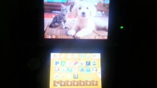 Nintendogs + Cats 3DS Golden Retriever Theme