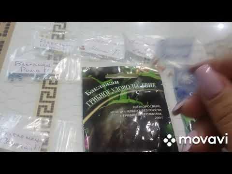 Вопрос: Когда начинают сеять семена баклажан на рассаду в 2020 году?