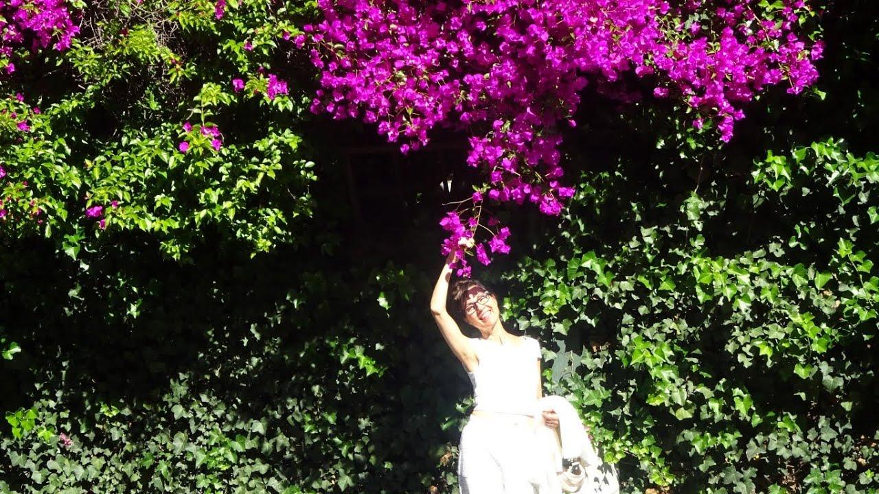 Un jardin des fleurs et une bonne f te toutes les for Le jardin des fleurs