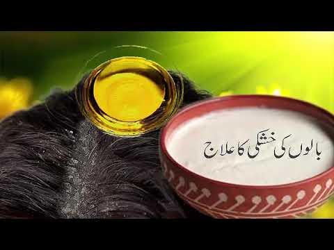 Hair Dandruff Solution 100 Percent Result Urdu Hindi