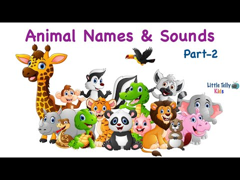 Learn Animal Names with Spellings & Sounds for Kids || Part - 2 || M to Z || Animal Names for kids