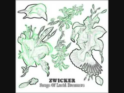 Zwicker feat. Heidi Happy - Who you are