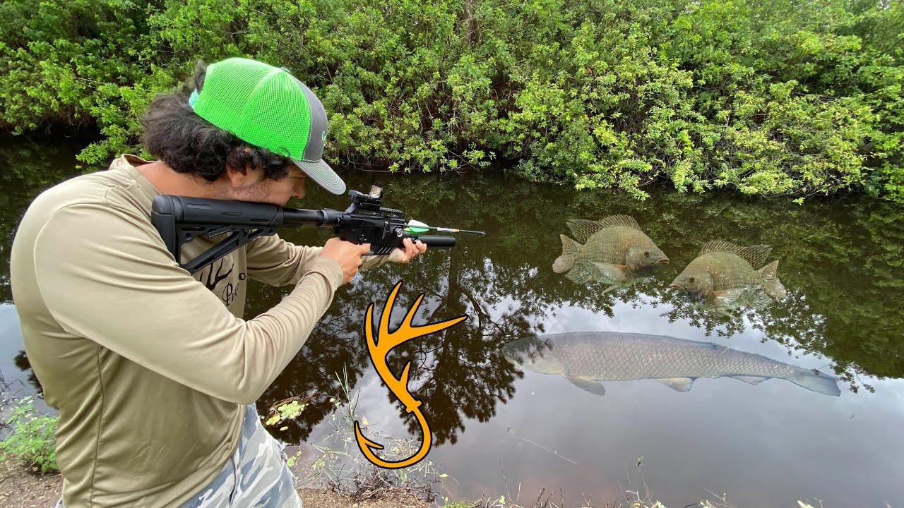 Pesca Con Rifle De Aire | Caza Y Pesca David Madrid