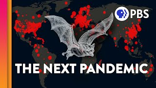 Why Do Other Animals Keep Giving Us Viruses?