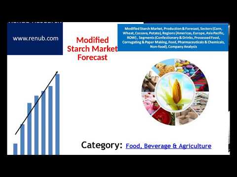 Modified Starch Market Production Forecast