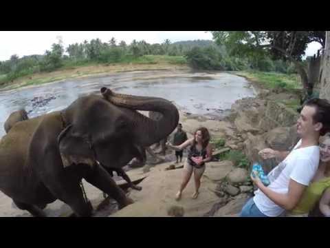 Sri Lanka 2016 GoPro 4K thumbnail
