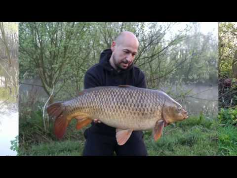 Episode 1: Bank Time - Jay Taylor Carp Fishing Blog - Broadlands Lakes