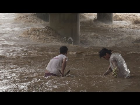 Typhoon Lando / Koppu Lashes Philippines - Flooding & Strong Winds Breaking News Footage