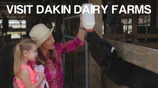 Florida Travel: Visiting Dakin Dairy Farms in Myakka City