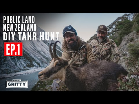 DIY TAHR HUNT PUBLIC LAND NEW ZEALAND