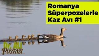 Romanya Süperpozelerle Kaz Avı 1 Doktor Ali Postası Yaban Tv - romania goose hunting