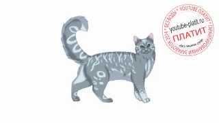 Как нарисовать четырехшлапого кота поэтапно карандашом за 27 секунд