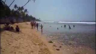 видео Пляж  Хиккадувы
