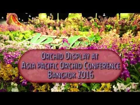 Orchid Show, Bangkok, Thailand, 2016
