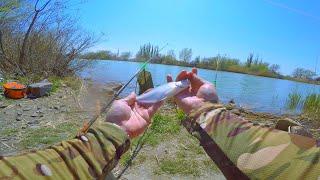 Рыбалка на донку с берега 2020 в ВДСК душевная рыбалка весной на канале с кормушкой