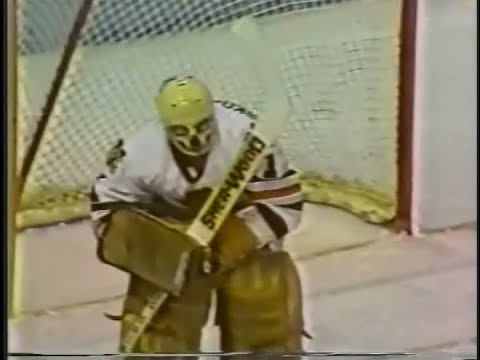 WARREN SKORODENSKI Saves (1980s)