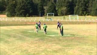 40 over cricket PEI vs NS 2013