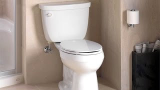 Golden nugget! From waste to riches in your potty