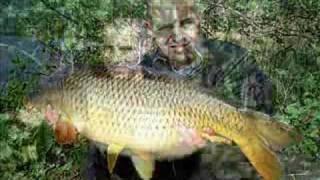 karper vissen in de beekse bergen te hilvarenbeek www.spiegelkarper.eu