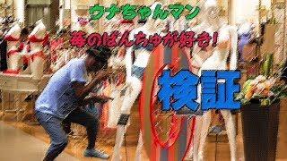 2017年7月30日枠での発言についての検証&PARODY BGM 演奏 制作 一休宗純.