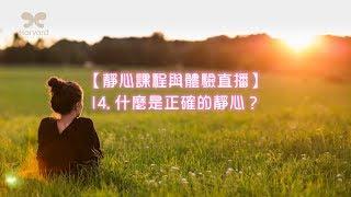 哈佛劉心陽醫師【靜心課程與體驗直播】14. 什麼是正確的靜心?(CC中文字幕)