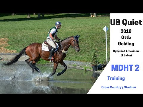 -- UB Quiet-- **** Maryland Horse Trials 2 Training Cross Country And Show Jumping ****