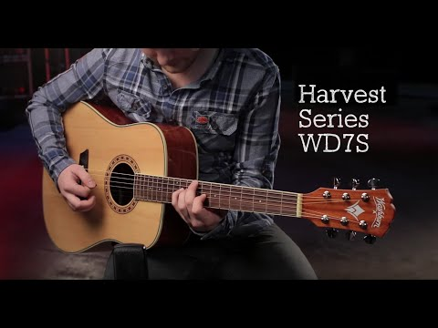 Top 5 Best Acoustic Guitars For Beginners (2019) | Spinditty