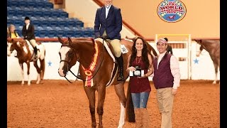 Good At It(sold)-2016 Res World Champion Am Cl Jr HUS class video (entire class & placings)