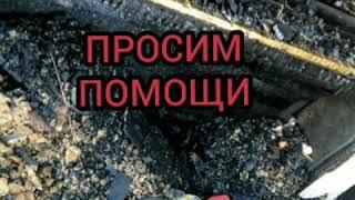 Смотреть видео Россия ПОМОГИТЕ!!! ЭТО НЕ РАЗВОД. ЭТО ТРАГЕДИЯ. МНОГО СОБАК ПОГИБЛО ПРИ ПОЖАРЕ...😭 онлайн