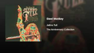 Steel Monkey