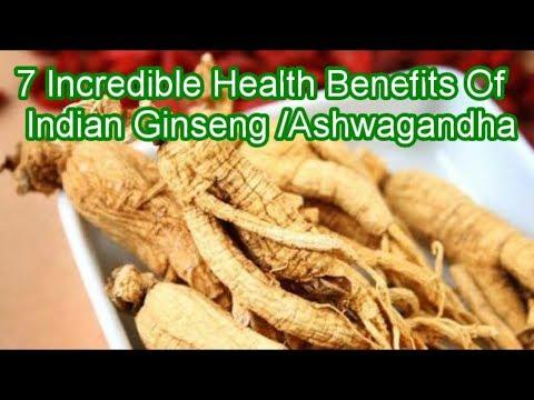 7 Incredible Health Benefits  Of Ashwagandha/Indian Ginseng@