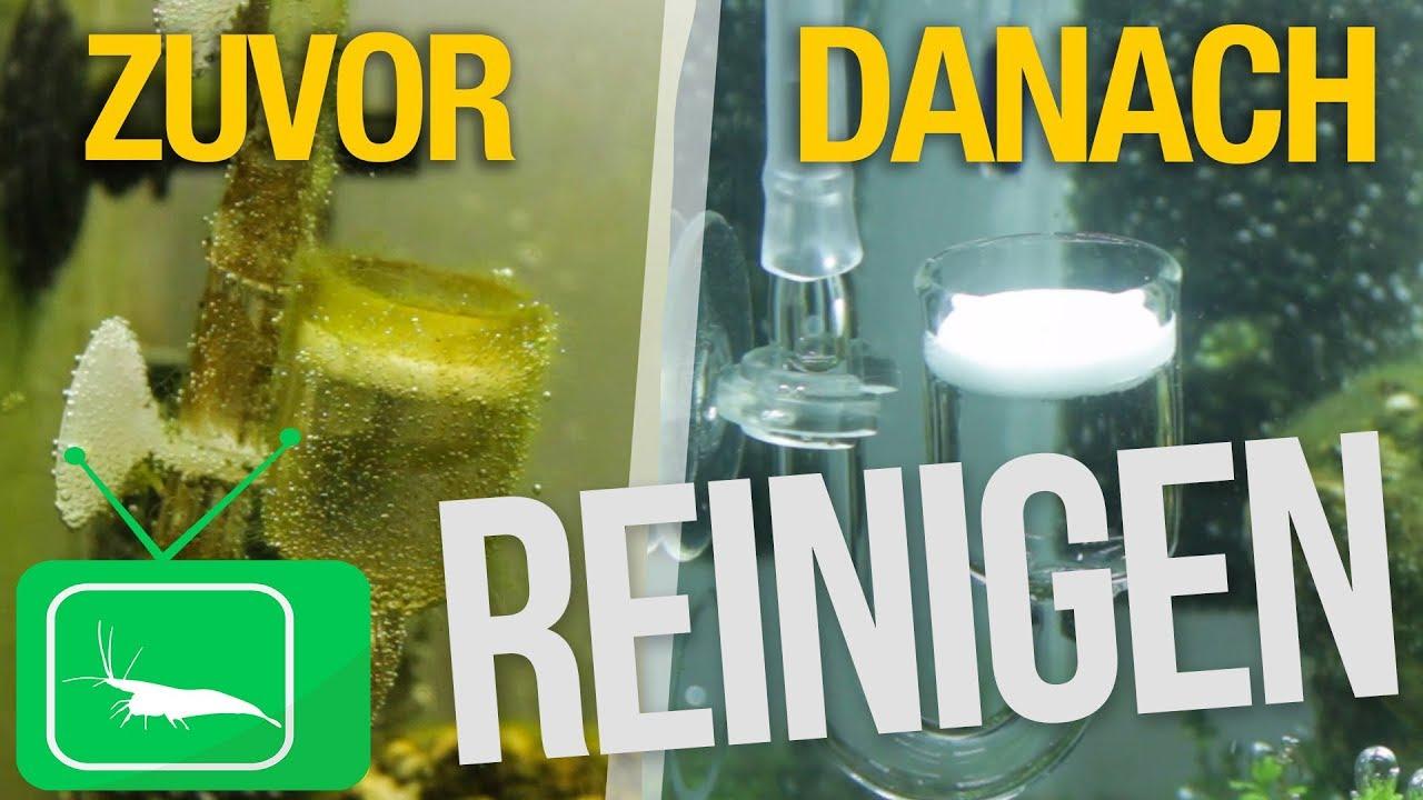 Co2 diffusor reinigen wissen garnelentv youtube for Aquarium reinigen