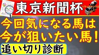 追い 東京 新聞 切り 杯