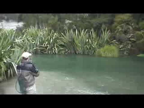 Paul Landing Nice Trout Waitahanui River