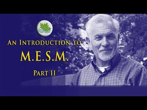 Intro to M.E.S.M., Part II