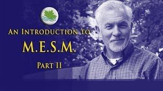 Intro to M.E.S.M., Part II