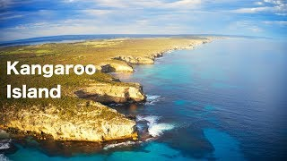 Australia's Hidden Gem - Kangaroo Island