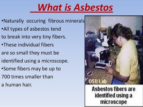 Image Result For Mesothelioma Definition