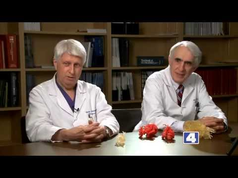 The Science of Healing: 3D Printing with SLUCare