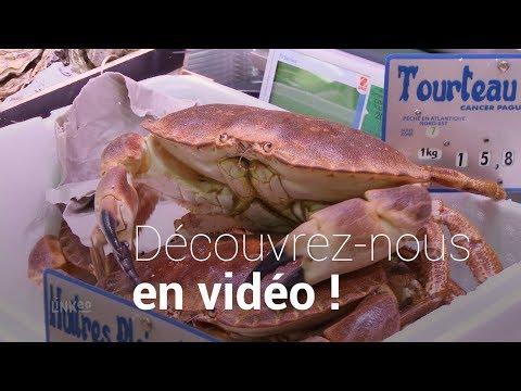 Poissonerie, poisson, crustacés, fruits de mer à Courbevoie : LA MAREE D'ARMOR